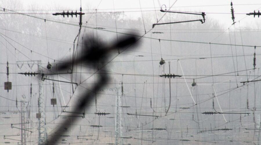 STIFF2020-workshops-urbane_vibracije